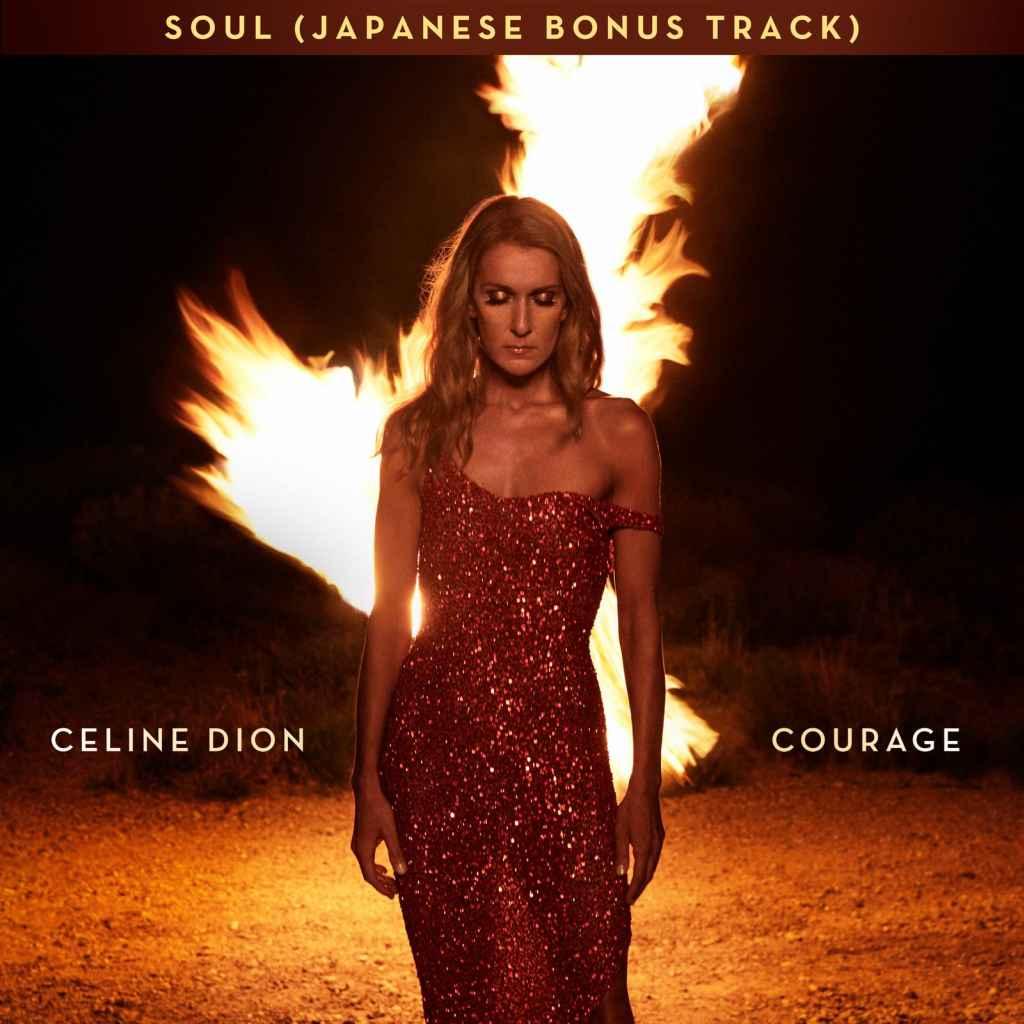 Celine Dion - Soul